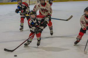 Hockey_Mosi-A-45